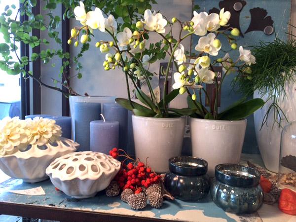 blumen ritter floristmeisterin ihre ansprechpartnerin f r blumenschmuck nicht nur in. Black Bedroom Furniture Sets. Home Design Ideas